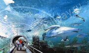 siam-ocean-world-in-bangkok